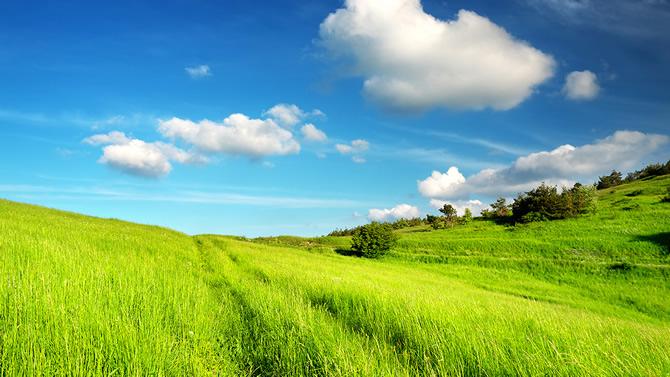קרקע חקלאית למכירה