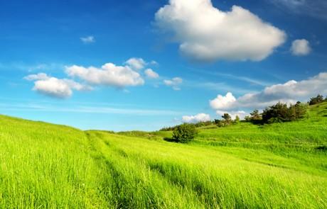 קרקעות חקלאיות למכירה – האם עדיין כדאי להשקיע ב קרקע חקלאית ?